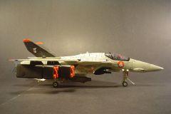 Custom 1/48 VF 1-S Red Roses