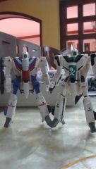 Customized VF-1A Kakizaki and Angel bird