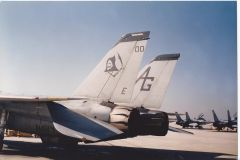 navy squadrons