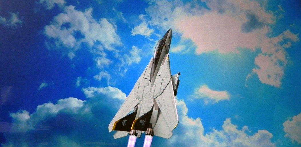 F-14_CalibreWings.jpg.e0e8d5d9a193de15e1b3dd0d6b960788.jpg