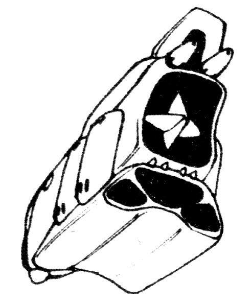 S-C1-Liewneuatzs-Shuttle-Personnel-Shuttle-5.jpg
