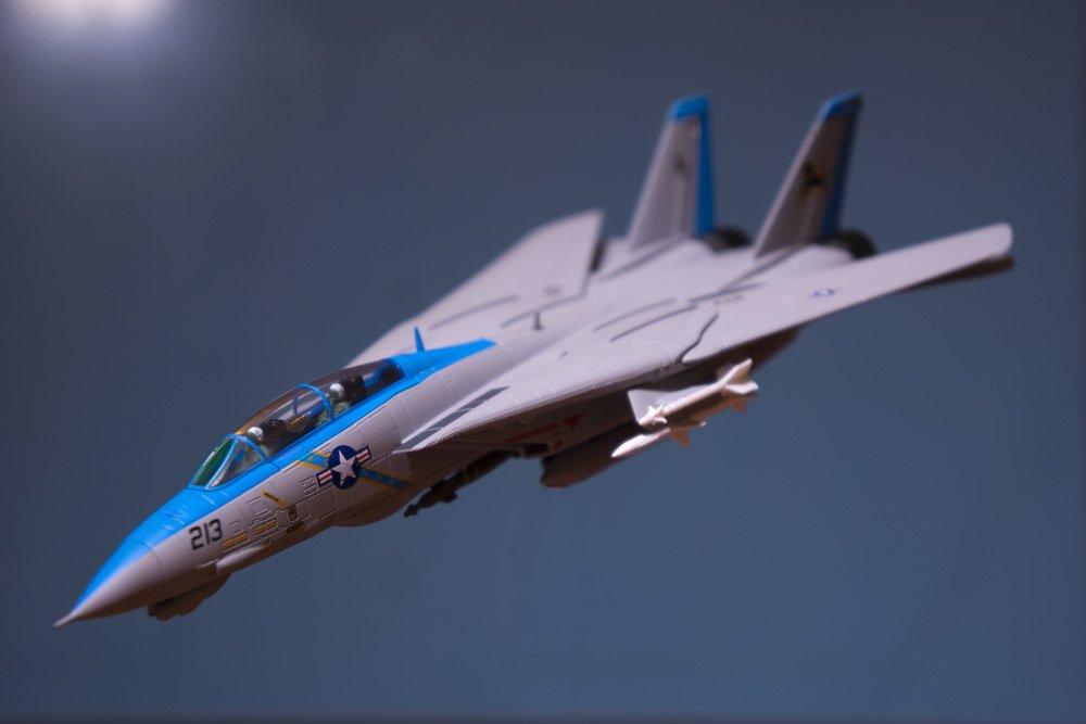 AFC_F-14D_VF-213.jpg.2bfc8a71e233b96c1bb15ad51be4d48c.jpg