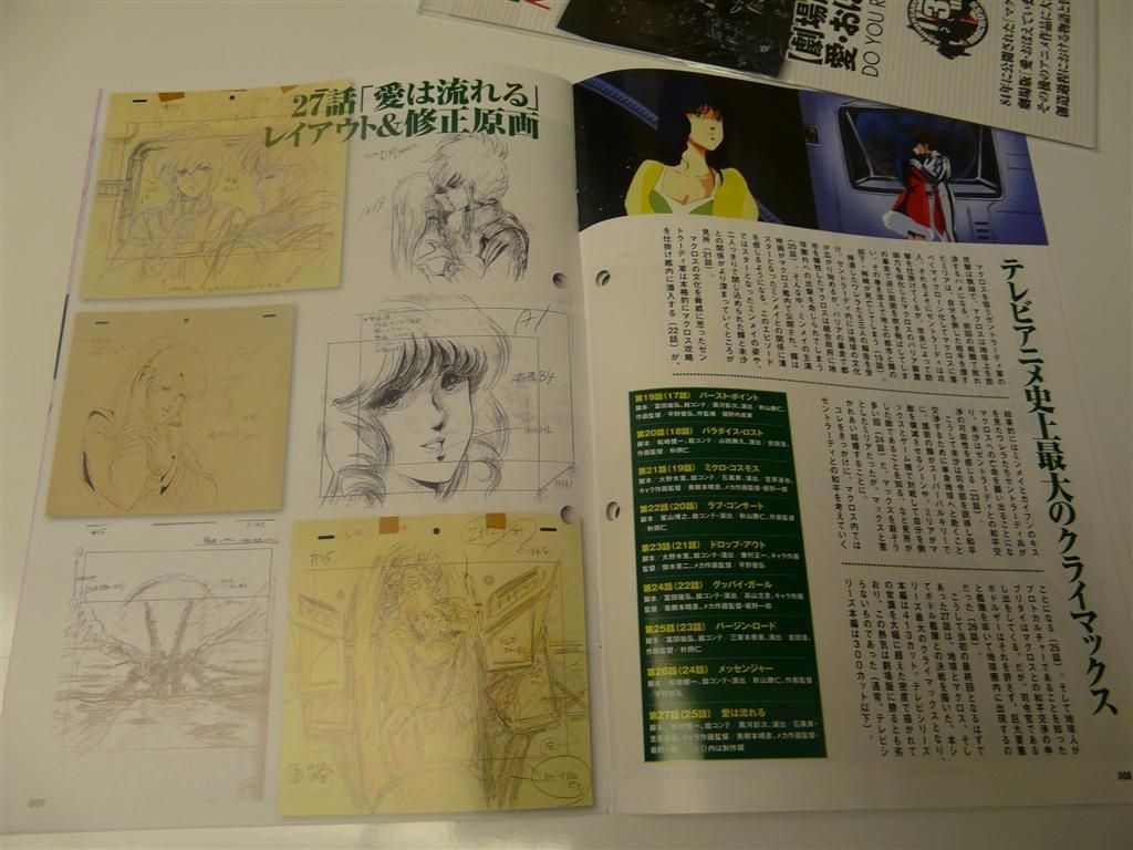 large.450919725_DocumentofMacross0036.jp