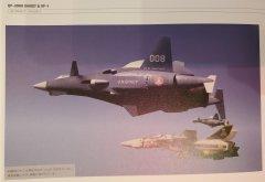 JVMacross Books - VF Master Files - VF-1S Roy Focker Special
